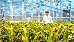 Take a look at How AgriTech will change the farming