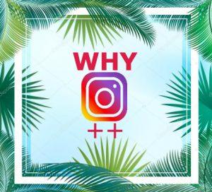 Instagram Plus APK Download Latest Version(August 2019 Updated)